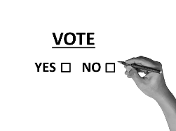 Boxes for yes and no and the word 'vote' above it